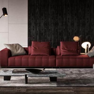 Minotti Freeman Tailor sofa